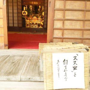鈴虫寺の所以